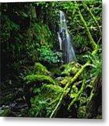 Waterfall, Sloughan Glen, Co Tyrone Metal Print