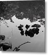 Watery Reflections Metal Print