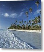 Waves Lapping Shore Of Beach With Palm Metal Print