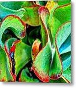 Waves Vegetable 3 Metal Print by Elena Mussi
