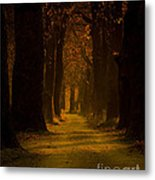 Way In The Forest Metal Print