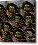 Way To Many Turtles Metal Print