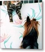 We Can Talk This Over... Metal Print