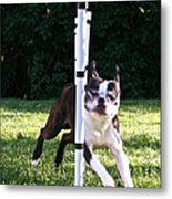 Weave Pole Wonder Metal Print