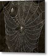 Web Master Metal Print