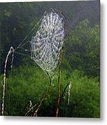 Web Over Foggy Lake Metal Print