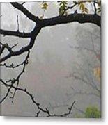 Wednesday Mist Metal Print