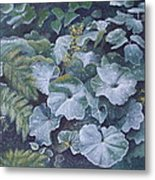 Weeping Ladies Mantle Metal Print