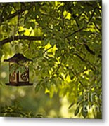 Welcome Feather Friends Metal Print