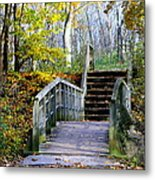 Welcome To My World Metal Print by Kay Novy