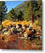 West Fork Of The Carson River Fall Colors Metal Print by Scott McGuire