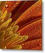 Wet Blumen Metal Print