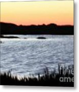 Wetland Metal Print