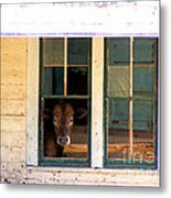What Is For Dinner? Metal Print