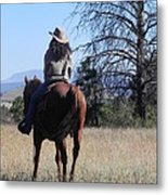 What Lies Ahead Series...follow Your Dreams Metal Print