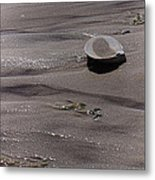 What The Tide Left Behind Metal Print