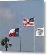 Whataburger Field Flags Metal Print