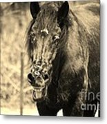 What's Wrong With My Face Metal Print