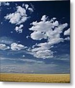 Wheat Field, Central Washington Metal Print