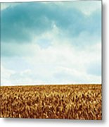 Wheatfield And Cloudy Sky Metal Print