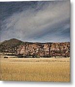 Wheatfield Zion National Park Metal Print