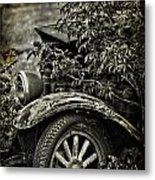 Wheels And Roots  Metal Print