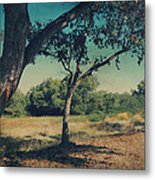 When I Was Your Girl Metal Print by Laurie Search