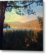 When I'm In Your Arms Metal Print by Laurie Search