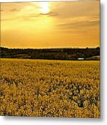 When The Sun Goes Down Metal Print by Karen Grist