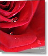 When Your Heart Cries Metal Print