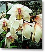 Whispers In The Greenhouse Metal Print
