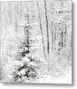 Whispers The Snow Metal Print