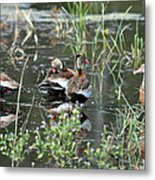 Whistler Reflections Metal Print