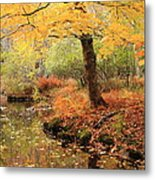 White Ash And Stream In Autumn Metal Print
