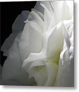 White Begonia I Metal Print