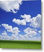 White Clouds In The Sky And Green Meadow Metal Print