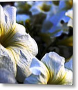 White Flowers At Dusk 2 Metal Print
