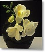 White Freesias In Black Vase Metal Print