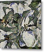 White Geraniums   -- Vangogh Metal Print