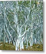 White Gum Forest Metal Print