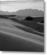 White Sands 2 Metal Print