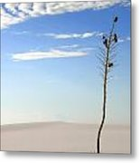 White Sands National Monument 1 Metal Print
