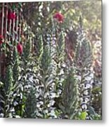 White Spike Orchids Metal Print by Denice Breaux