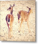 White Tails In The Snow Metal Print