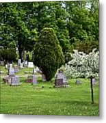 White Tree In Cemetery Metal Print