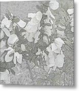 White Wild Flowers Metal Print