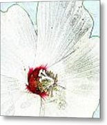 White Wildflower V Metal Print