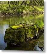 Whitewater River Spring 12 Metal Print