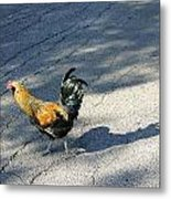 Why Did He Cross The Road Metal Print