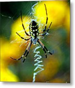 Wicked Spider Paint Metal Print